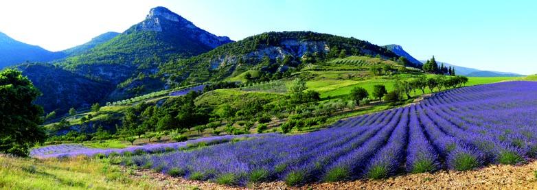 Parc Régional des Baronnies Provençales