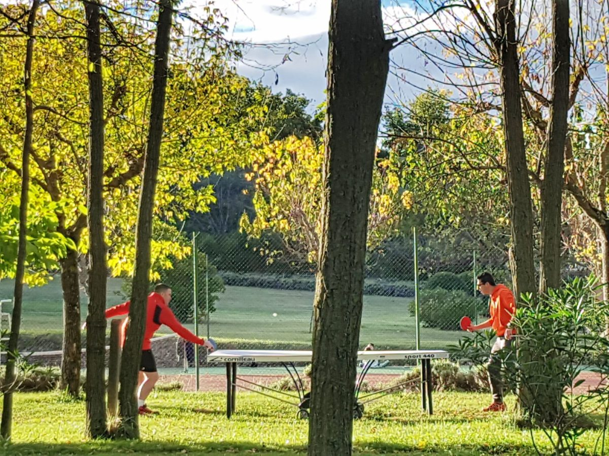 Ping-pong Automne